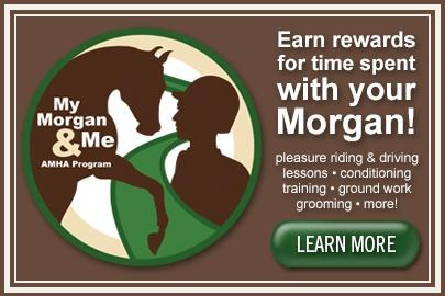 My Morgan and Me Program